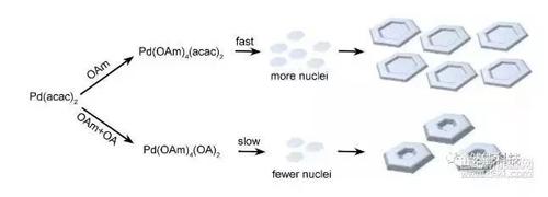 纳米拓扑结构示意图